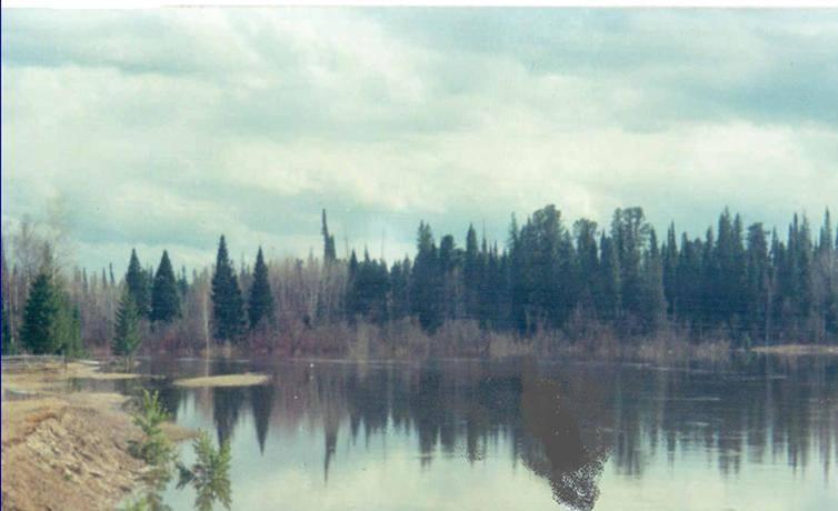 Река Четь